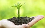 绿色发展是政治责任