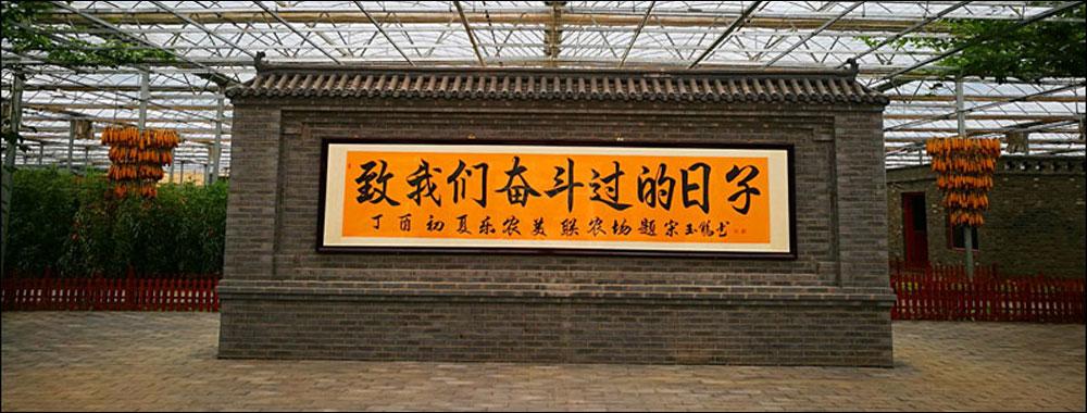 """京津冀媒体大咖读香河 顺着""""荷""""意行走体验"""