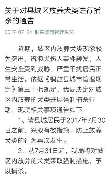 铜鼓县城管执法局捕杀放养犬公告