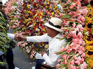 哥伦比亚年度鲜花游行
