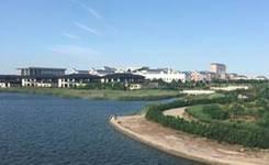 环境宜人的渤海新区