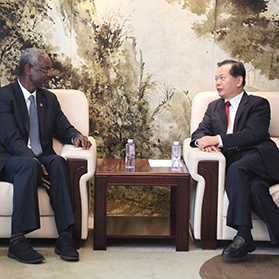 Vice President Wang Jinzhen Met with the Party of Ibrahim Thiaw, Assistant Secretary General and Deputy Director General at the UN Environment Program, and Carried out the Expo Invitation and Lobbying of the 2019 Beijing Expo