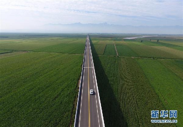 陕西沿黄公路渭河特大桥与远处的华山相映成景(8月8日摄)。新华社记者 邵瑞 摄
