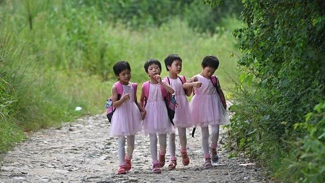 深山里的四胞胎姐妹上学了
