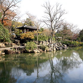 What Are We Talking about when We Talk about Plants in Classical Chinese Gardens?
