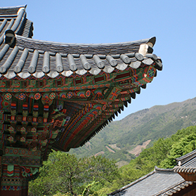 Experts Said Vegetable Oil is Good for Protection of Ancient Architecture