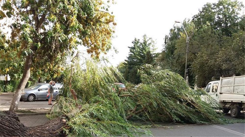 罗马尼亚西部地区强暴风雨致8死近70伤