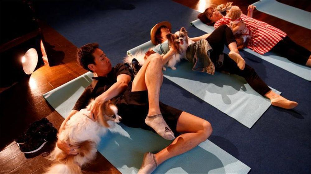 宠物也要体面!日本举办宠物葬礼博览会