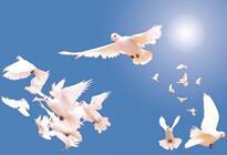 和平发展道路