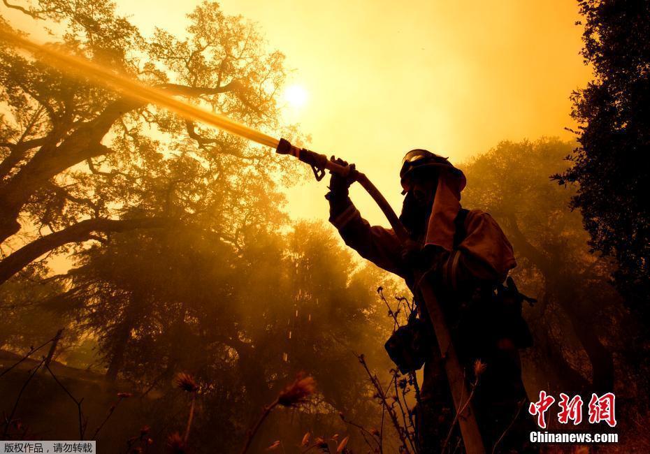 美国加州发生森林火灾 当地居民自发救火( 02 / 8 )