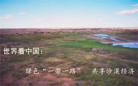 """世界看中国:绿色""""一带一路"""" 共享沙漠经济"""