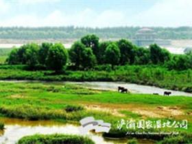 西安浐灞国家湿地公园