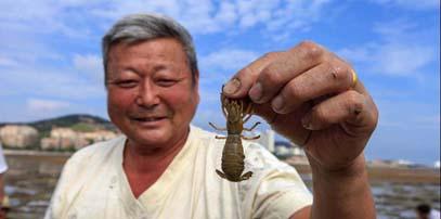 """青岛海滨钓""""海蜂子"""" 久远迷人的风景线"""