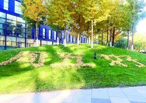 北京:绿化工人用落叶摆字 创意给生活增添乐趣