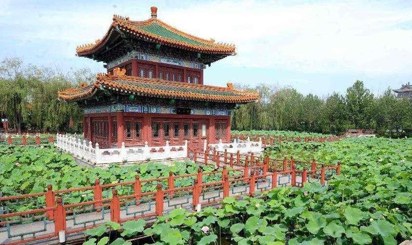 """""""荷花之乡""""香河:两个月吸引70万名京津等地游客"""