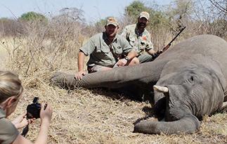 南非圈养濒危动物供猎手杀戮题材纪录片引发关注