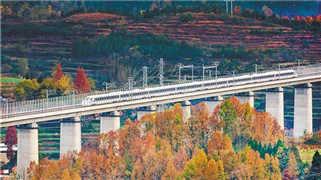 政协提案助力建成西成高铁 生态和经济都兼顾