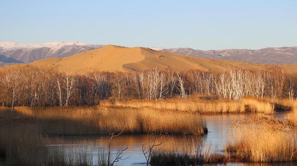 新疆兵团白沙湖初冬美景似水墨画卷