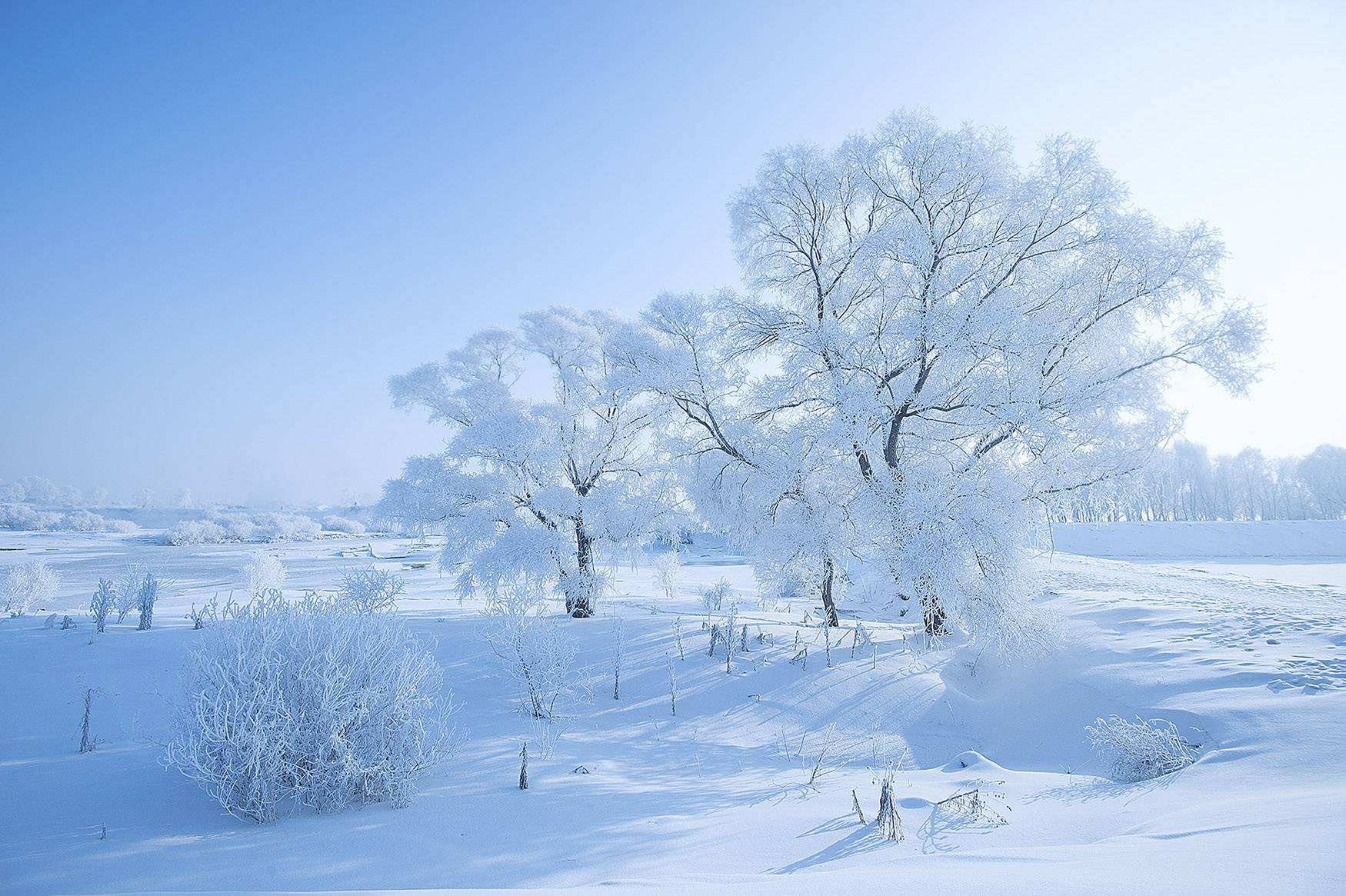 大顶山白色雾凇美如画