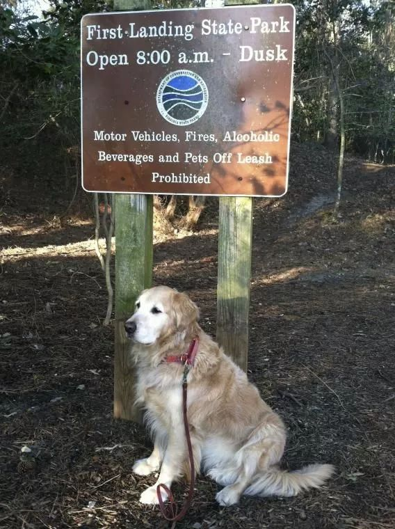 ▲美国公园树立着不准宠物入内的标牌。