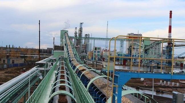 中企承建白俄罗斯大型纸浆厂正式投产