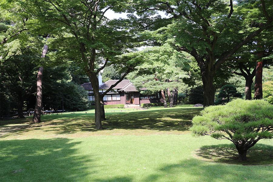 江户:殿谷户庭园之主馆