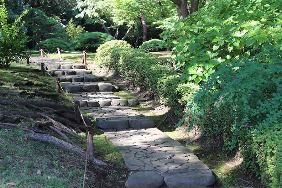 江户:殿谷户庭园之花木园