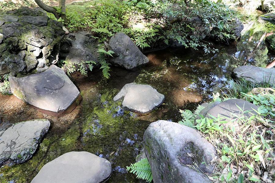江户:殿谷户庭园之次郎弁天池