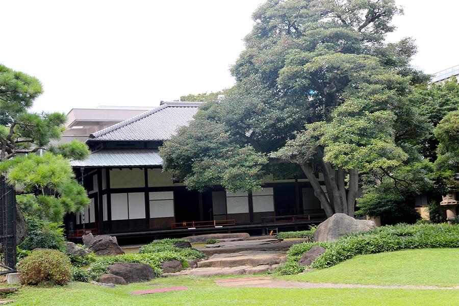 江户:旧岩崎邸庭园之和馆