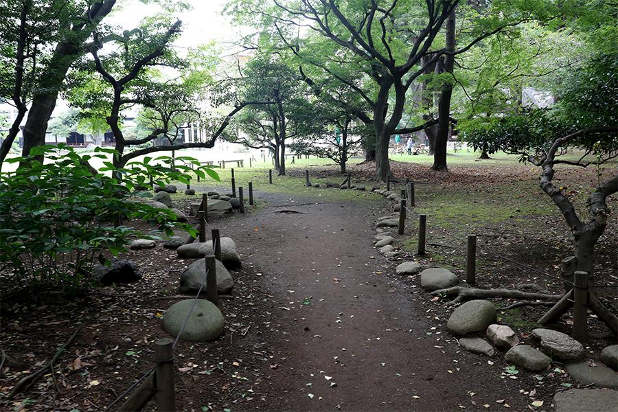 江户:旧岩崎邸庭园之庭园