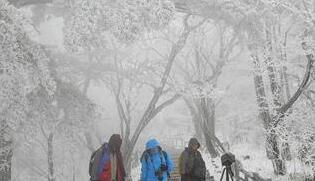 安徽黃山迎來今冬首場降雪