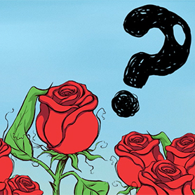 Why do Red Roses Stand for Love?