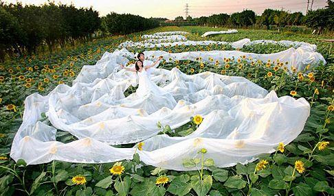 غرائب و عجائب فساتين الزفاف فى العالم 000bcdb9591a08814af31b