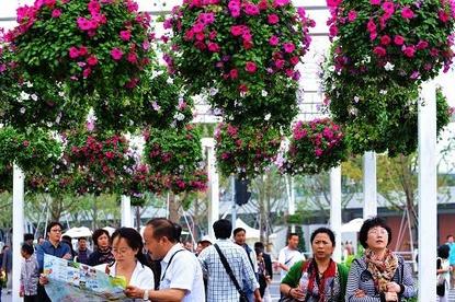زهور جذابة وروائح فواحة بإكسبو شانغهاي العالمي في الخريف