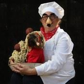 كلاب أليفة تشارك في حفل أزياء تنكرية لاستقبال عيد الهالووين (خاص)