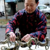 دُمًى 'الحصان' تستقبل عيد الربيع بشرق الصين