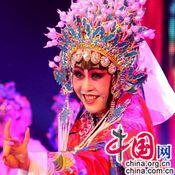 عروض فنية لاستقبال 'عام الحصان' بشينجيانغ