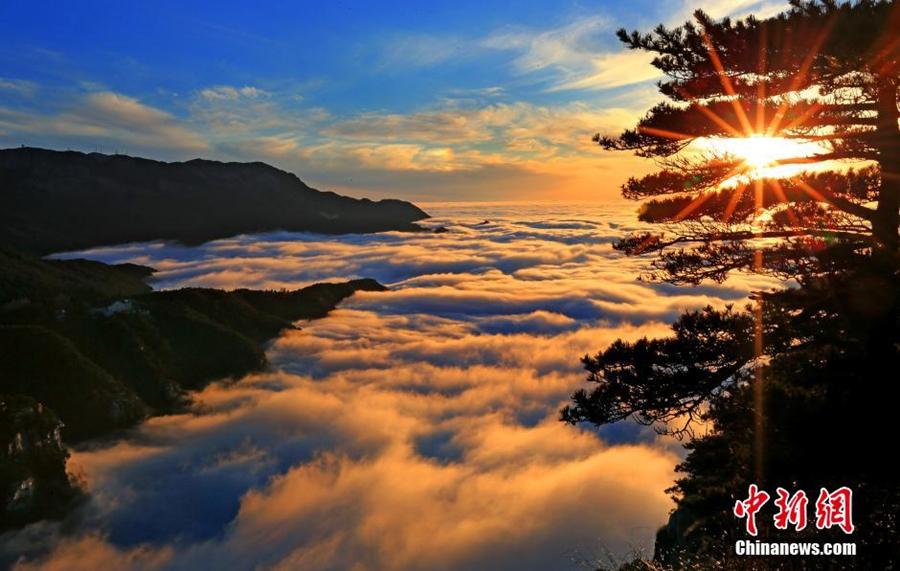 مناظر بحر السحاب في جبل لوشان تجذب زوارا من كل أنحاء العالم