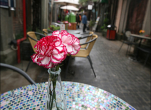 La beauté des ruelles nongtang de Shanghai : le quartier Tianzifang