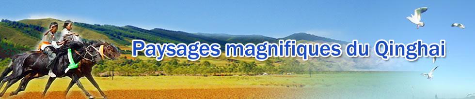 Paysages magnifiques du Qinghai