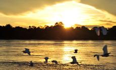 Le crépuscule au fleuve Zambèze
