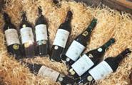 Une salle de dégustation des vins d'un célèbre producteur du Cap