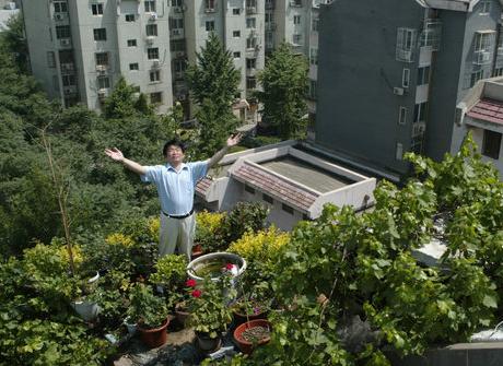 Un homme du nom de Gao présente son jardin sur le toit de son immeuble résidentiel, sur cette photo non datée.