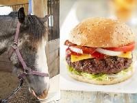 Des hamburgers contenant de viande de cheval trouvées en Finlande