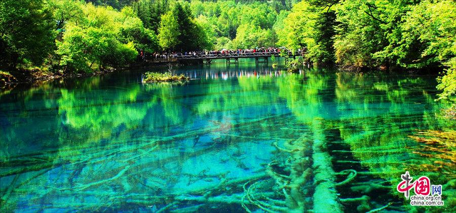 Le paysage multicolore de jiuzhaigou en plein t for Le paysage