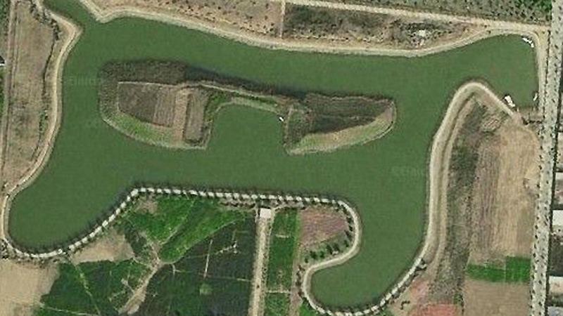 Shandong : un champ en forme de cheval