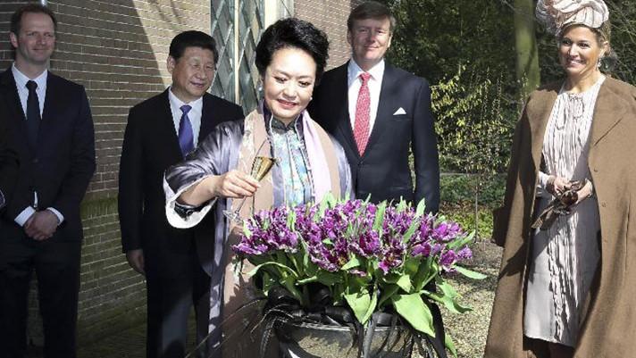 Cathey, la tulipe de Peng Liyuan, va fleurir dans le jardin botanique de Beijing