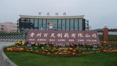 Le Guizhou repense la production des médicaments traditionnels