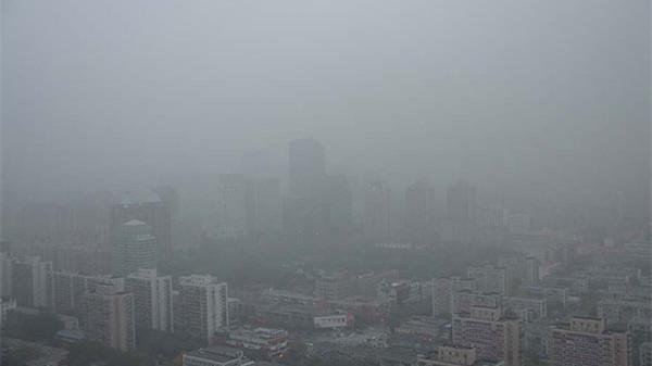 La population réclame davantage de mesures concrètes pour lutter contre la pollution