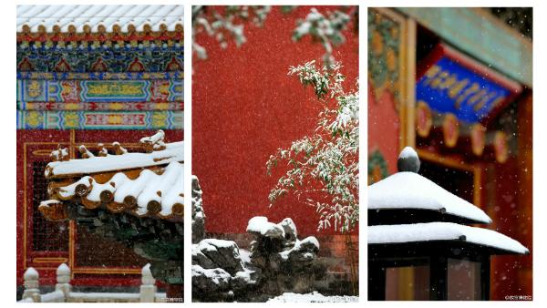 La Cité interdite sous la neige, un ravissant contraste de couleurs